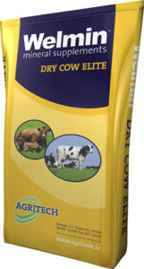 Welmin Dry Cow Elite - Welmin Dairy Mineral Supplements