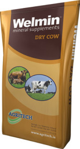 Welmin Dry Cow - Welmin Dairy Mineral Supplements