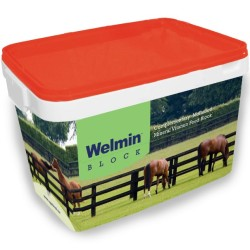 Welmin Horse Block - Welmin Horse Mineral Supplements