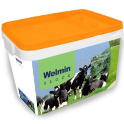 Welmin Dry Cow Elite Block - Welmin Dairy Mineral Supplements
