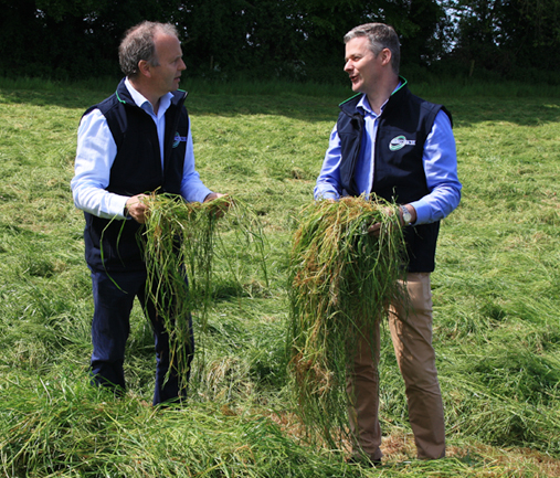 Image of Agritech team in a field of silage