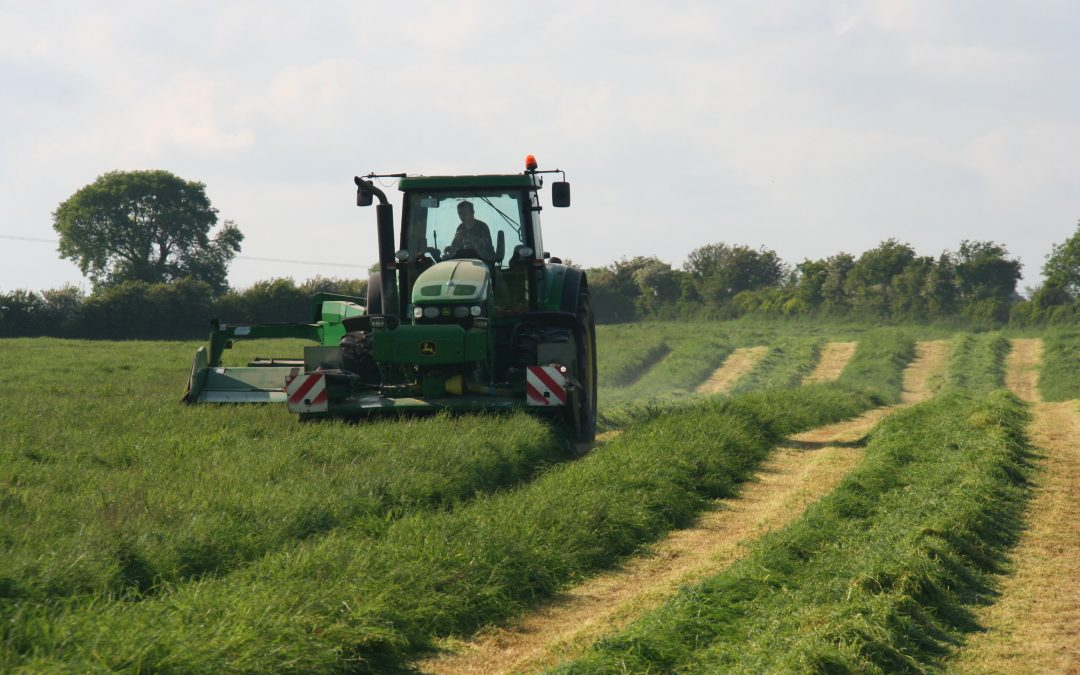 Silage Preservation: Time to get serious about quality