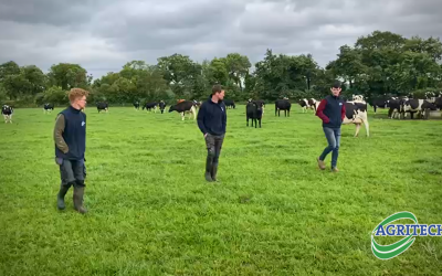 Milk Shack innovators find success with Tipperary Grass 4A