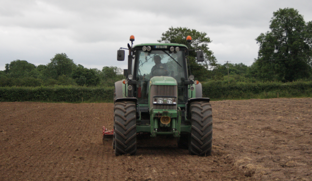 Autumn Reseeding: Sowing date effecting spring grass availability