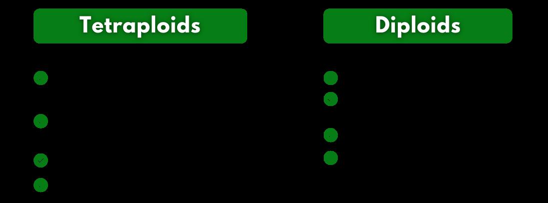 tetraploid vs diploid grass graph