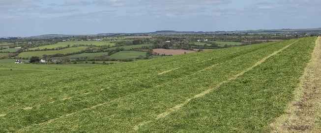 silage field on hill